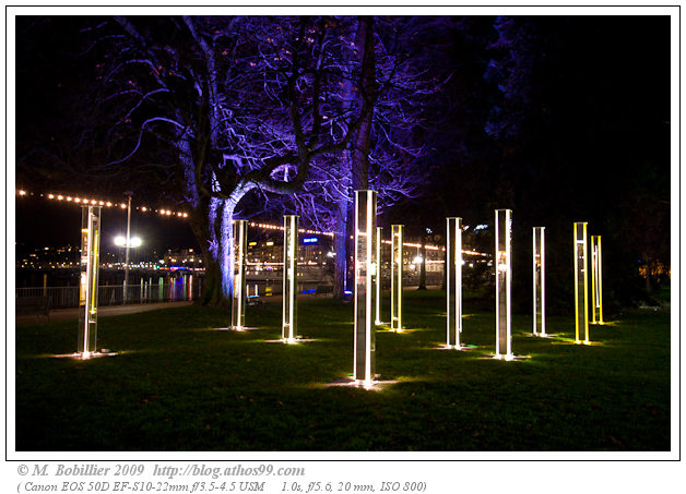Light rooms, Festival Arbres et Lumières 2009