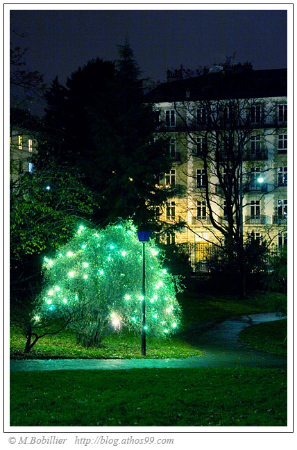 Rminiscences, Arbres et Lumires, Genve 2007